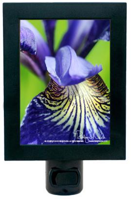Attractive U201cBeauty Of The Irisu201d Flower Night Light Great Pictures