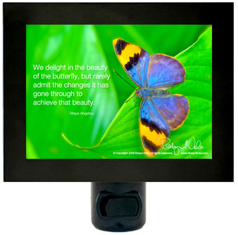 Maya Angelou Butterfly Inspirational Quote Night Light Robyn Nola