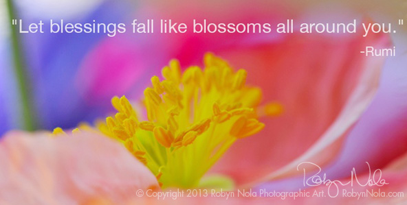 inspirational quote and flower photography by robyn nola robyn