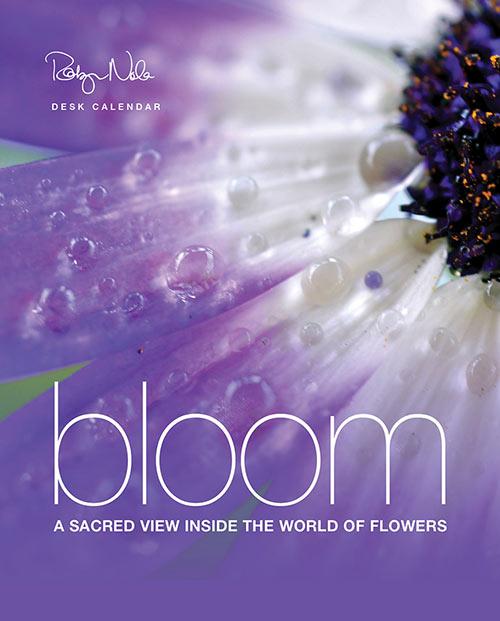 New Orleans Festival Calendar 2020 Bloom: 2020 Flower Calendar by Robyn Nola   Robyn Nola Gifts